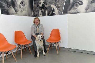 Foto do interior da clínica Easyvet com cliente e o seu cão