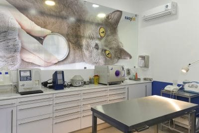 Foto do interior da clínica Easyvet